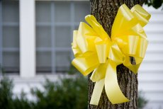 "I read something very interesting the other day from the Veterans Affairs Office of Economic Opportunity about the Yellow Ribbon Programs. Yes, I said ""ProgramS."" That ""S"" is what really caught […]"