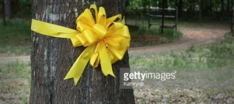 Military Yellow ribbons for trees