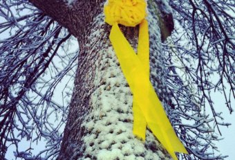 Buy large Yellow Ribbon for Tree