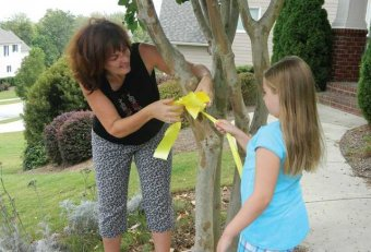 Tying Yellow ribbons on trees