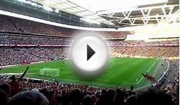 She wore a yellow ribbon - Arsenal Wembley 2014