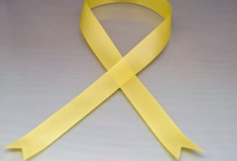 Yellow ribbon tied around dog leash